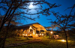 2021-GP-Mara-Expedition-Camp-Room5